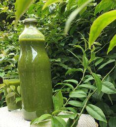 Ora-Pro-Nobis - nesta planta está a solução de muitas doenças. Ora Pro Nobis, Smoothies Detox, E 500, Kefir, Oras, Science And Nature, Aloe Vera, Cucumber, The Cure