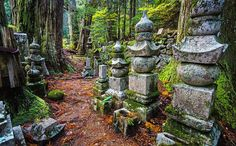 Ancient cemetery - Japan