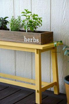 Plant your own DIY Herb Garden. Fun decor and gardening idea!
