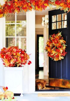 Looking for fall porch decorating ideas? Here are some simple ideas to get your porch ready for fall with all the colors of the season. Fall porch. Fall decor. Fall decorating ideas. Fall porch decor.