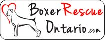 Boxer Rescue Ontario is a nonprofit organization of volunteers dedicated to placing abandoned, injured or lost boxers in loving homes. We work with other rescue groups, shelters, veterinarians, breeders and the public to promote responsible pet ownership in and around Ontario.
