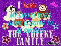 cheeky pants | JUST WON A WEBKINZ BROWN CHEEKY DOG!!!!!