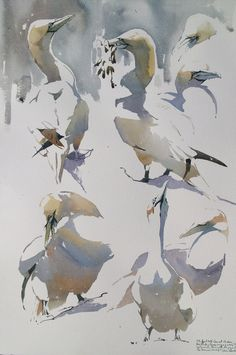 The Watercolour Log: Watercolour Painting 62 - a 2020 Special! Watercolor Pictures, Watercolor Artists, Watercolor Sketch, Watercolor Bird, Watercolor Artwork, Watercolor Animals, Artist Painting, Watercolor Illustration, Painting & Drawing