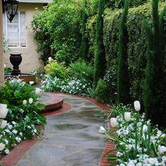 Classical entryway - traditional - landscape - san francisco - Verdance Fine…
