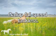 Gallop Full Speed Tackless