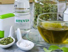 Tasuta suhkruvabad retseptid, mida on kiire ja lihtne valmistada! Stevia, Healthy Recepies, Anti Inflammatory Diet, Diet Menu, Cucumber, Food And Drink, Health Fitness, Drinks, Desserts