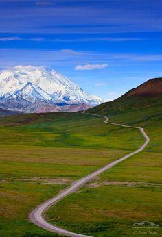 Denali Park Road, Alaska | Fantasy Road Trip | Road Trip | Road | Road photo | on the road | the open road | drive | travel | wanderlust | landscape photography | Schomp MINI