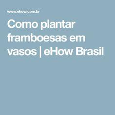Como plantar framboesas em vasos   eHow Brasil