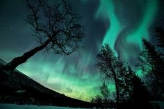 Welcome To My Free Wallpaper Section Aurora Borealis Finlandusagefeel Free To Use The Content Inside Of The Section