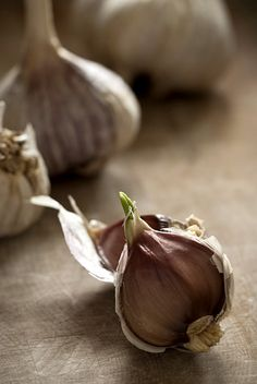 garlic-I use fresh garlic in almost everything I cook..love it