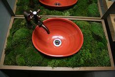 Cute moss blog I'm loving the moss!