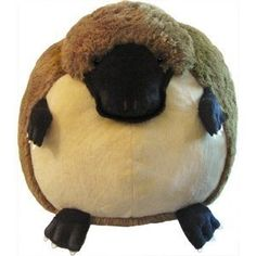 Squishable Platypus Courtney find this on amazon or something