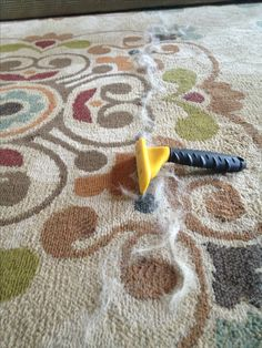Use the Furminator to remove stubborn dog hair from rug/couch... Genius!