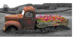 Old_Truck_with_a_flower_bed_by_Pete_Ramberg_web.282111759_large.jpg (774×396)