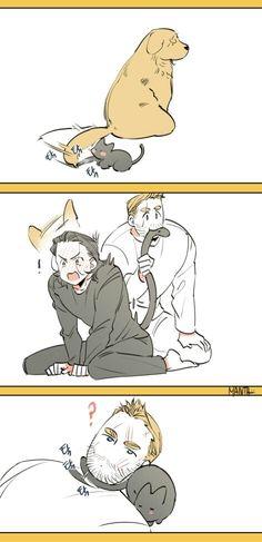 Like cats and dogs || Thor & Loki || Cr: Manta