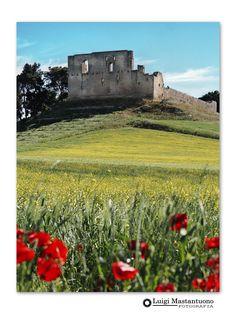 Castello di Gravina in Puglia. Ph Luigi Mastantuono. Luigi, Ph, Vineyard, Digital, Outdoor, Fotografia, Outdoors, Vine Yard, Vineyard Vines