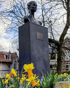 Bust of #audreyhepburn in #Arnhem. She used to live in Arnhem during WW2. We offer an Audrey Hepburn city walk and will show you the places she used to live at and the troubles she encountered here during the war.