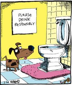 Today on Reality Check - Comics by Dave Whamond Funny Cartoons, Funny Comics, Funny Memes, Cute Animal Memes, Funny Animals, Dog Comics, Jokes Pics, Funny Comic Strips, Stupid Funny