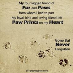 My four legged friend of Fur and Paws from whom I had to part.  my loyal, kind and loving friend left Paw Prints on my Heart...Gone But NEVER Forgotten.