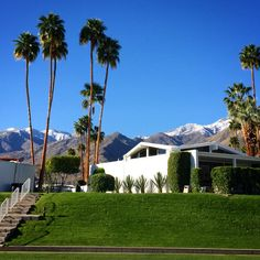 Snow capped! Canyon View Estates, Palm Springs