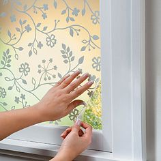 Decorative Window Film adheres to any window or mirror to give your home a fresh outlook. This window privacy film blocks a view while still allowing light to enter in. Windows, Decor, Decorative Window Film, Window Coverings, Window Decor, Window Dressings, Kitchen Window, Home Decor, Home Projects