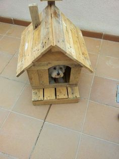 Small dog house made from upcycled pallets..cute!