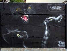 """""""A nice, sunny caturday..."""" by Taker - street art"""