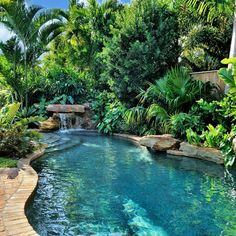 Craig Reynolds, Key West, Landscape Design, Hardscape, Swimming Pool Source by thomsje Luxury Swimming Pools, Natural Swimming Pools, Luxury Pools, Dream Pools, Swimming Pools Backyard, Swimming Pool Designs, Natural Pools, Lap Pools, Indoor Pools