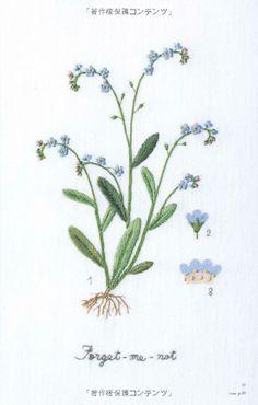 Amazon.co.jp: 庭の花図鑑 青木和子の刺しゅう: 青木 和子: 本