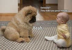 Funny photos - Page 60