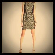 Ann Taylor Loft Black with gold dress Ann Taylor black and gold dress Ann Taylor Dresses