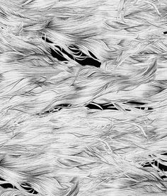 Tuuliturkki by Minna Havas