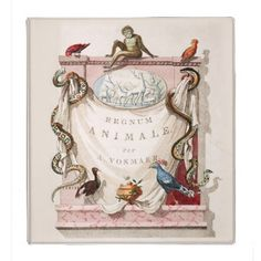 Binder - Vintage Office Decor This binder is decorated on the front with an antique bookplate for a old zoological encyclopedia. A...