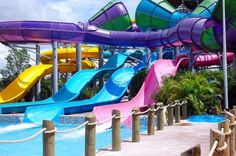 Water slides! Looks like so much fun!