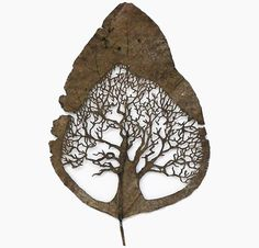 Spanish artist Lorenzo Duran cuts intricate patterns and scenes into natural leaves, after they've been washed and dried.