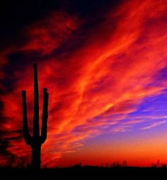 El Camino Diablo.... Yuma, Az   Sunsets are still accessible, our government has not figured out how to barricade them yet
