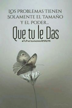 Los problemas*... Positive Phrases, Positive Thoughts, Positive Quotes, Spanish Posters, Spanish Quotes, Lines Quotes, Words Quotes, My Children Quotes, Good Day Quotes
