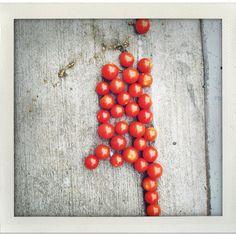 Tomatoes. Tomatoes, Vegetables, Awesome, Food, Essen, Vegetable Recipes, Meals, Yemek, Veggies