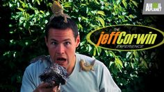 The Jeff Corwin Experience - We are loving this series! Big hit with the boys. Corwin has a funny personality. Also enjoying the fact that he takes us to interesting places around the world.