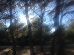 A few weeks after moving to our house in the Spanish countryside, my husband stumbled upon this beautiful place just five minutes walk. Tucked away in the woods there you'll find a small bar with big surroundings.