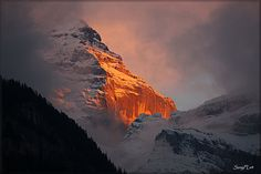 Swiss Alps on Fire - The Jungfrau Seen at Sunset [Explored] by SunyFLx4, via Flickr