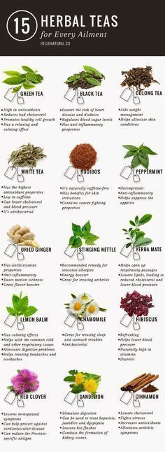 Green tea is not the only tea with promising (and according to many sources, PROVEN) health benefits. This infographic illustrates and describes 14 other healing herbal teas. www.detoxmetea.com #healthandfitnessfood