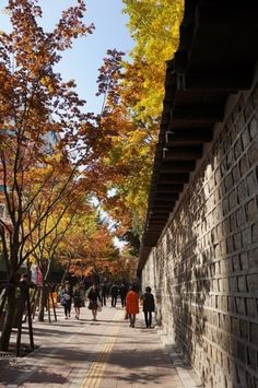 덕수궁 돌담길 Asia, Alleyway, Beautiful Pictures, Beautiful Scenery, Seoul Korea, Town And Country, Culture Travel, Japan, Landscape