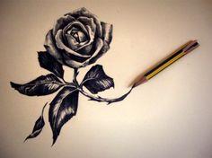 tumblr drawing blavk rose - Recherche Google
