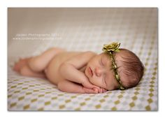 baby olive girl will need one of these made out of olive leaves for her newborn photos