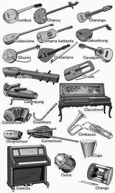 World musical instruments The names of musical instruments. from Caja to Cumbus. Monochrome illustration.