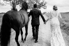 bride and groom with horse on a country road on wedding day in Upstate, NY | wedding horse
