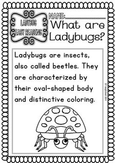 Ladybug-Ready-to-Print-Easy-Readings-and-Worksheets-1145402 Teaching Resources - TeachersPayTeachers.com