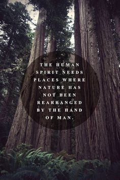 """The human spirit needs places where nature has not been rearranged by the hand of man."" (anon)"