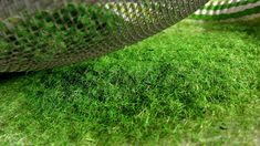 How to Make HIGH-QUALITY Grass Flocking (Not Sawdust) Ho Trains, Model Trains, Faux Grass, Landscape Model, Modeling Techniques, Military Diorama, Model Train Layouts, Miniature Crafts, Faux Plants